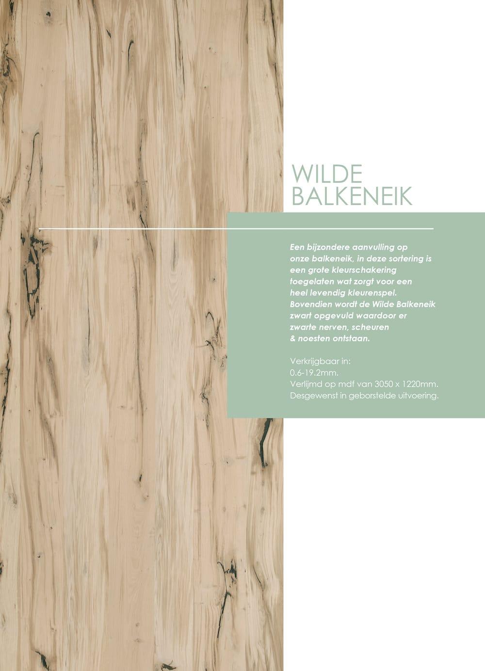 01b_zkl_GVi_c_def_mei2020_FOLDER_fineer_wildebalkeneik_paneel